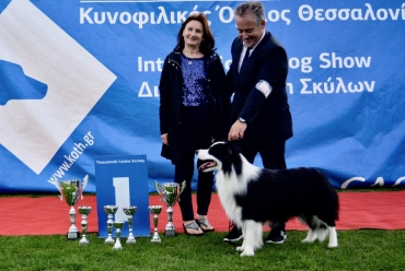 Intl. Dog Show at Thessaloniki 20-21/5/2017