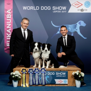 GERMAN WINNER & WORLD DOG SHOW 2017!!!